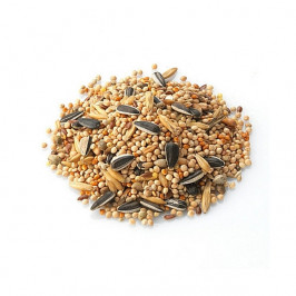 Savory Seeds Trail Mix
